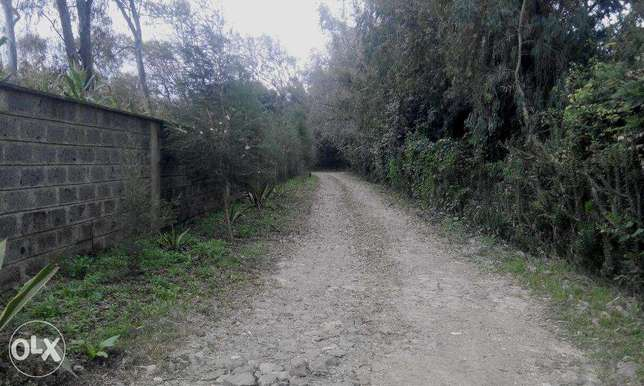 This is a prime 1/2 acre in Karen. Nairobi CBD - image 3