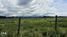 Plot for sale in Nanyuki