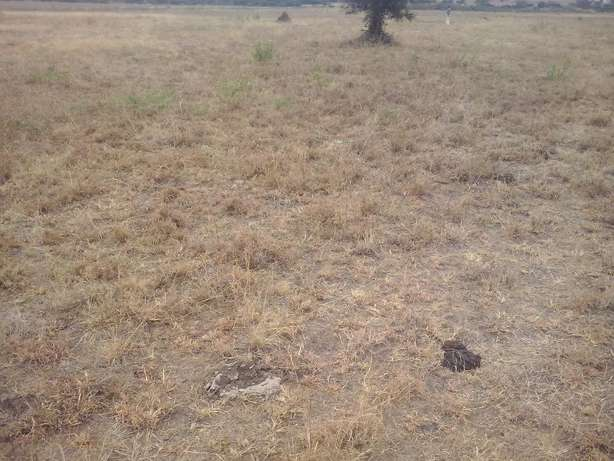 1/4 Acre for sale in Athi river City Centre - image 1