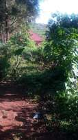 50*100 Bulenga forest park with ready title