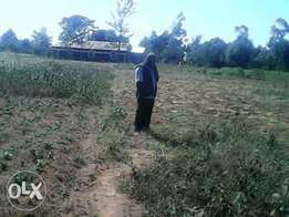 1acre on sell