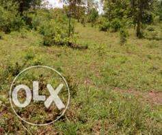Selling 1/4 Acre in Embu for 350,000 (Title inclusive)15Km fromEmbu