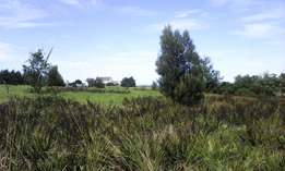 TSITSIKAMMA 1243 sqm. Land For Sale or To Swop & Trade ! ZAR 1.25 mil