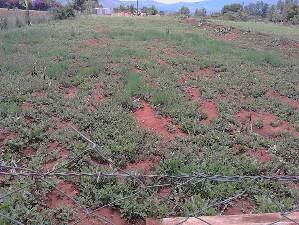 A plot of 50ft by 100ft at Machakos town Eastleigh behind Salvation Ar Eastleigh - image 2