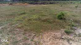 Genuine plot of land for sale.