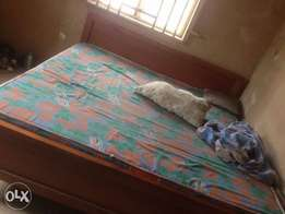 family size bed 6x6