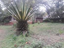 Prime 0.73 Acre of land for sale in Lavington