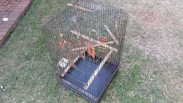 Great condition bird cage with extras !!!