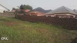Good 50*100ft of plot on sale in Kira at 43m