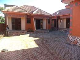 New double house for rent in kyanja