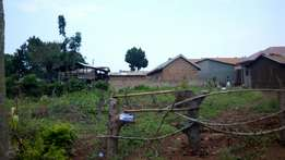 Plot of 25 decimals in mukono wantonne at 35m