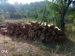 kosso wood for export