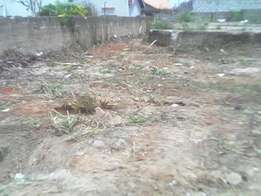 Walled and gated titled plot for sale at Oyarifa Kumsac estate.