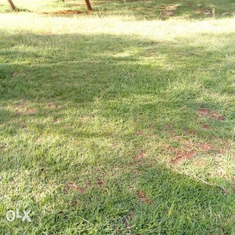Membley plot 30 by 60 ft at 3m.water and electricity available Ruiru - image 1