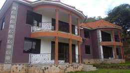 Charming 3 bedroom apartment for rent in Muyenga at 1000$