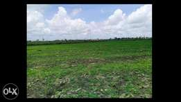 1/8 Acre plot Ruiru next to Kenyatta's family land