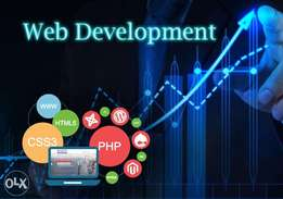 Are you Looking website Development for your business??