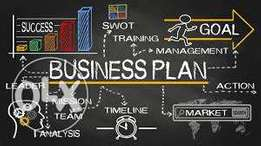 Business Plan and Execution Steps