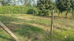 1/8 of an acre for sale in kanyariri kabete