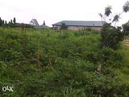 Plots of land for sale at portharcourt rd