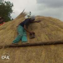 Thatching house roofs