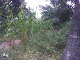 land 4.25 acres 4th row mnagoni near mariakani