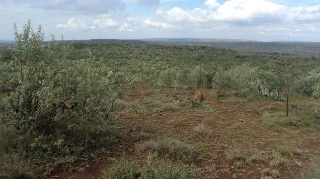 22 Acre land for sale in Kiloret along Ngong Najile road Saikeri - image 2