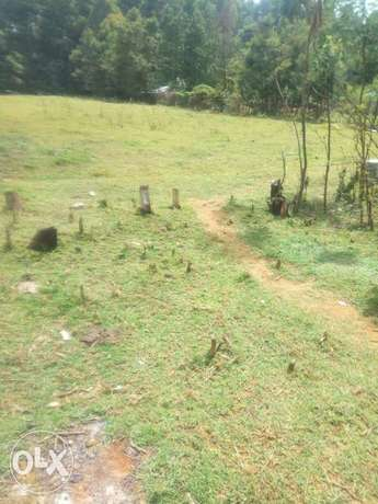 Land kamkunji 40 peercels of land 1/4 1.65m good for homes Eldoret East - image 2