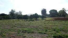 80 by 100 Plot for sale in Landless Thika
