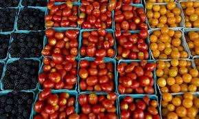 Tomatoes on Sale Meru Town - image 2