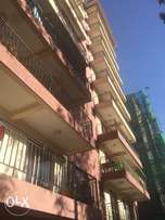 Two & Three bedroom apartment for rental