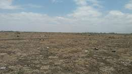 12 acres land for sale in Sabaki.