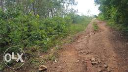 3/4 acre for sell near Ikonyero