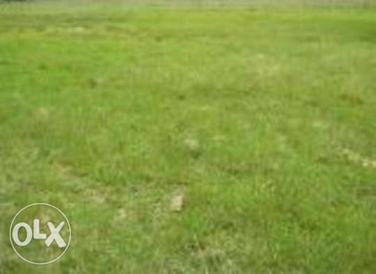 Plots for sale Kitengela - image 3
