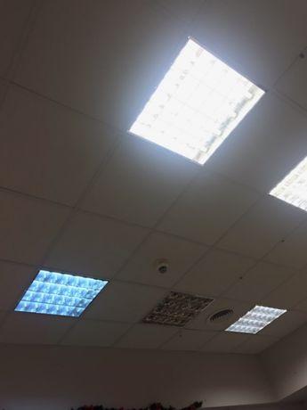 Oświetlenie Sufitowe Lampy Halogeny I Oprawy Rastrowe