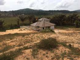 33 Dec Jomayi Kawuku Sisa plot for sale 80M