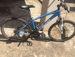 Giant Bicycle for sale Small