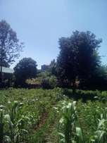 50 by 100 plot for sale at ruaka