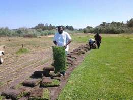 Mr Lawn. Instant Lawns in Gauteng/ Topsoil, Compost we Deliver