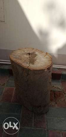Tree trunk for sale