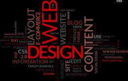 Professional Websites and Graphic Designing