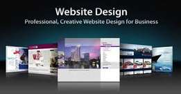 Professional website developer and Redesing of website ksh 4000