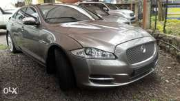 Jaguar premium for sale
