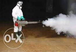 Fumigation and cleaning services