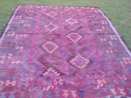 This carpet must go,make an offer!!!