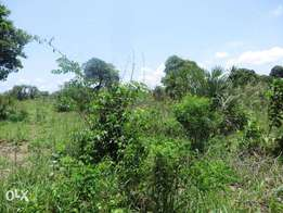 Eighth Acre Plots near Ukunda (Kinondo)