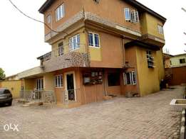 Tastefully mini flat to let at ago palace way,okota