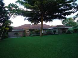 4 Bedroom Bungalow For Sale in Runda