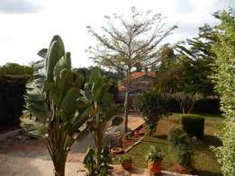 Nyeri House for sale
