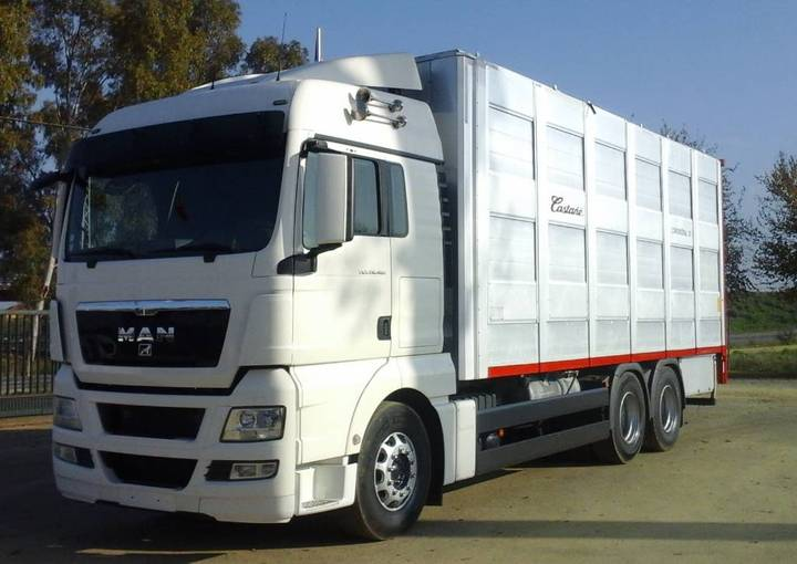 MAN TGX 28 480 GANADERO - 2007